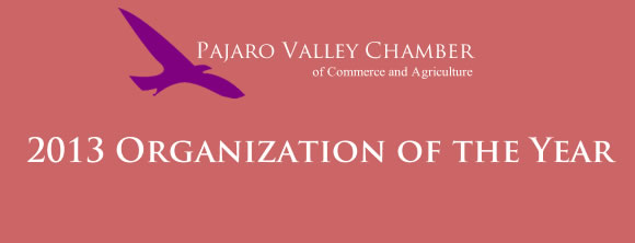 2013 Organization of the Year